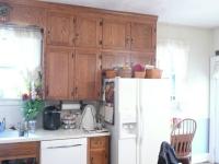gaynier-kitchen-1